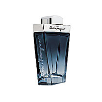 Salvatore Ferragamo Subtil EdT 100ml M