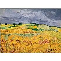 Van Gogh, Pole