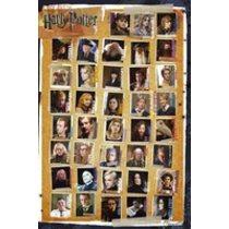 POSTERS HARRY POTTER 7 characters plakát 61 x 91 cm