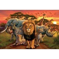 POSTERS AFRICAN KINGDOM africké království plakát 91 x 61 cm