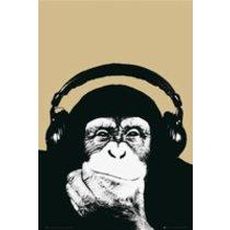 POSTERS STEEZ opice plakát 61 x 91 cm
