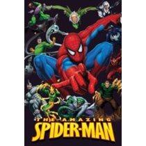 POSTERS SPIDER MAN plakát 61 x 91 cm