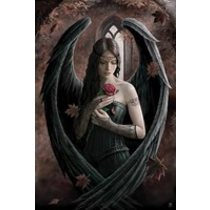 POSTERS ANNE STOKES angel rose plakát 61 x 91 cm