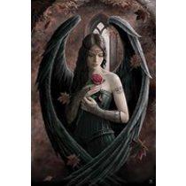 POSTERS ANNE STOKES angel rose plakát 61 x 91 cm