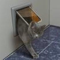 Dvířka pro kočky