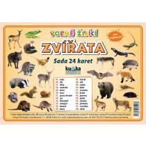 Volně žijící zvířata - Sada 24 karet