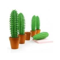 Kaktusové pero