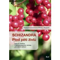 Schizandra - Plod pěti živlů. Léčivá rostlina s povzbuzujícími