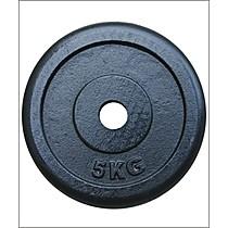 Insportline Závaží 5 kg ocelové