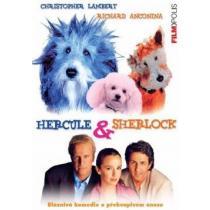 Hercule a Sherlock (Hercule & Sherlock) DVD