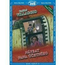 Návrat pana účetního DVD