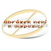 SIEMENS HZ 36 D 513