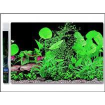 AQUA EXCELLENT Pozadí ráj rostlin 1 100*50cm