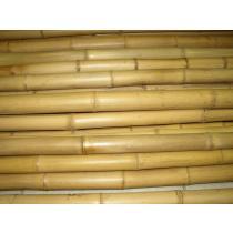 Bambusová tyč 5-7 cm 4m