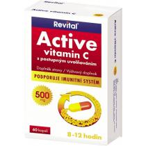VITAR Revital Active vitamin C 500mg tbl.60