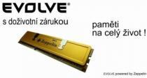 Evolve Zeppelin GOLD 8GB (2x4GB) DDR3 1333 CL 9 (4G/1333XK2 EG)
