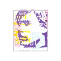 Andy Warhol a Československo - Cihlář Michal