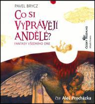 Co si vyprávějí andělé? - Fantasy všedního dne - CD - Brycz