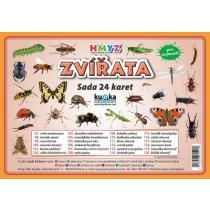 Zvířata hmyz - Sada 24 karet - Kupka Petr