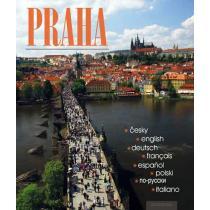 Praha - ČJ, AJ, NJ, FJ, ŠJ, Pol.J, RJ, IJ