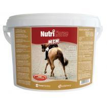 Biofaktory Nutri Horse MSM plv 1kg