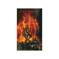 Farland David Čaroděj v srdci světa - Runovládci 7