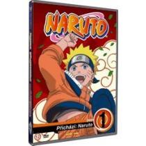 Naruto 1 DVD