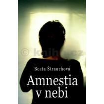 Beata Štrauchová: Amnestia v nebi