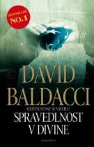 David Baldacci: Spravedlnost v Divine
