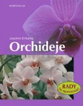 Joachim Erfkamp: Orchideje