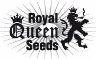 Royal Queen Seeds Medical Mix 5ks (Feminizovaná)