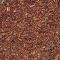 Rooibos MINT 50g